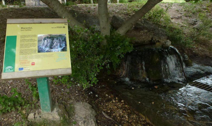 Las aguas subterráneas del Parque Natural Sierra de Grazalema también están contaminadas por glifosato