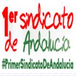 CCOO exige el cese del Delegado Territorial de Educación de Cádiz